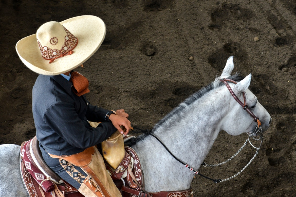 Mexican charros mariachis horses horseback sombrero Mexico traditions ruedo racing culture festival rural equine holiday traditional outfit outdoors outfitters mexicano vaqueros sombreros band rider