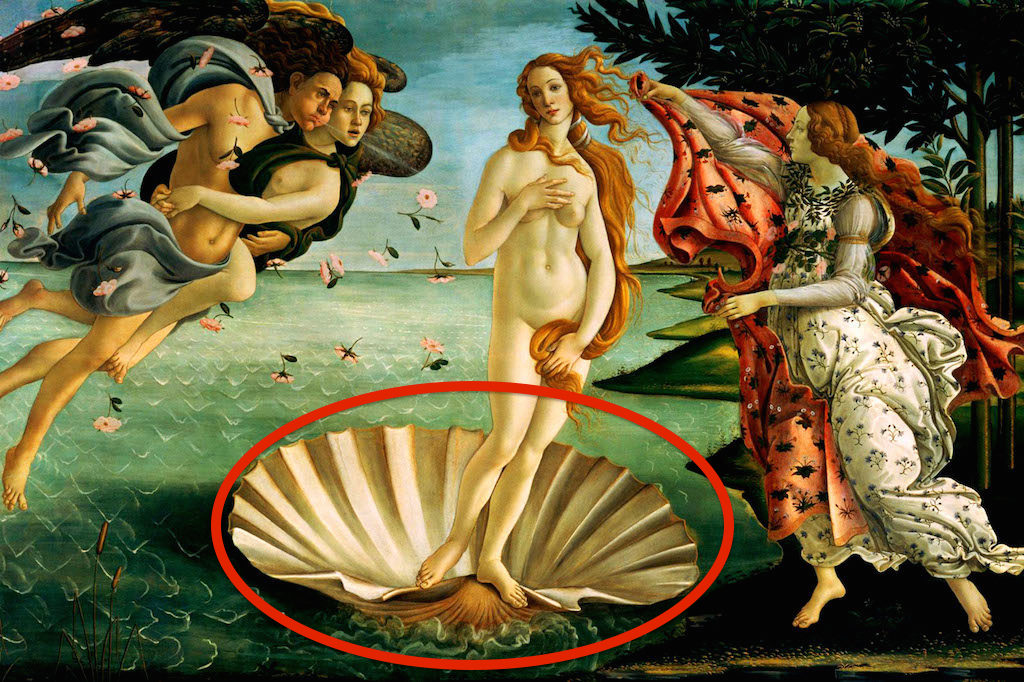 DGXKXG The Birth of Venus - by Sandro Botticelli, 1486 - Editorial use only.