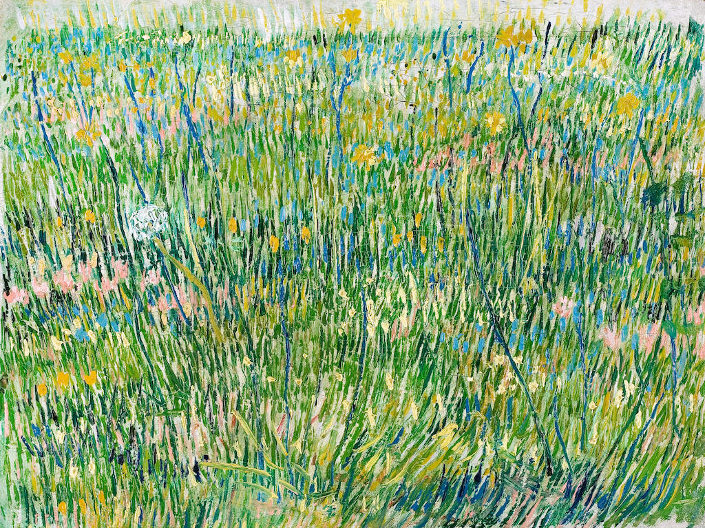 ED8T9W Vincent van Gogh, Patch of Grass 1887 Oil on canvas. Kroller-Muller Museum, Otterlo, Netherlands.