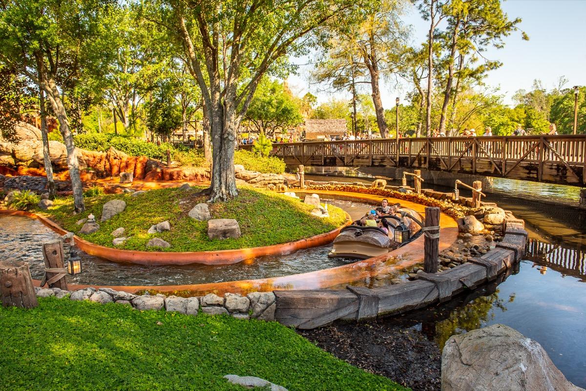 Trees surround Disney's Splash mountain ride on sunny day, Disney facts