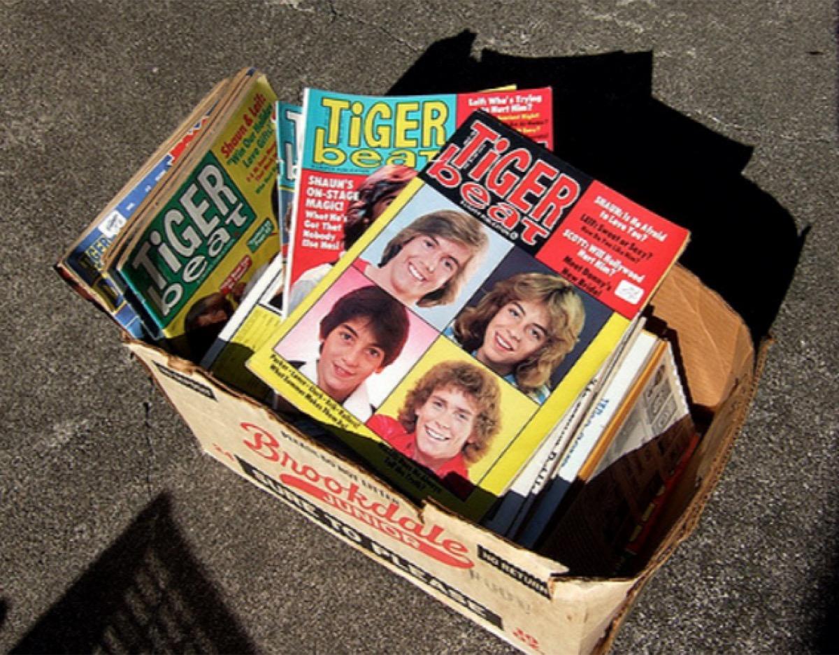 Tiger Beat magazines