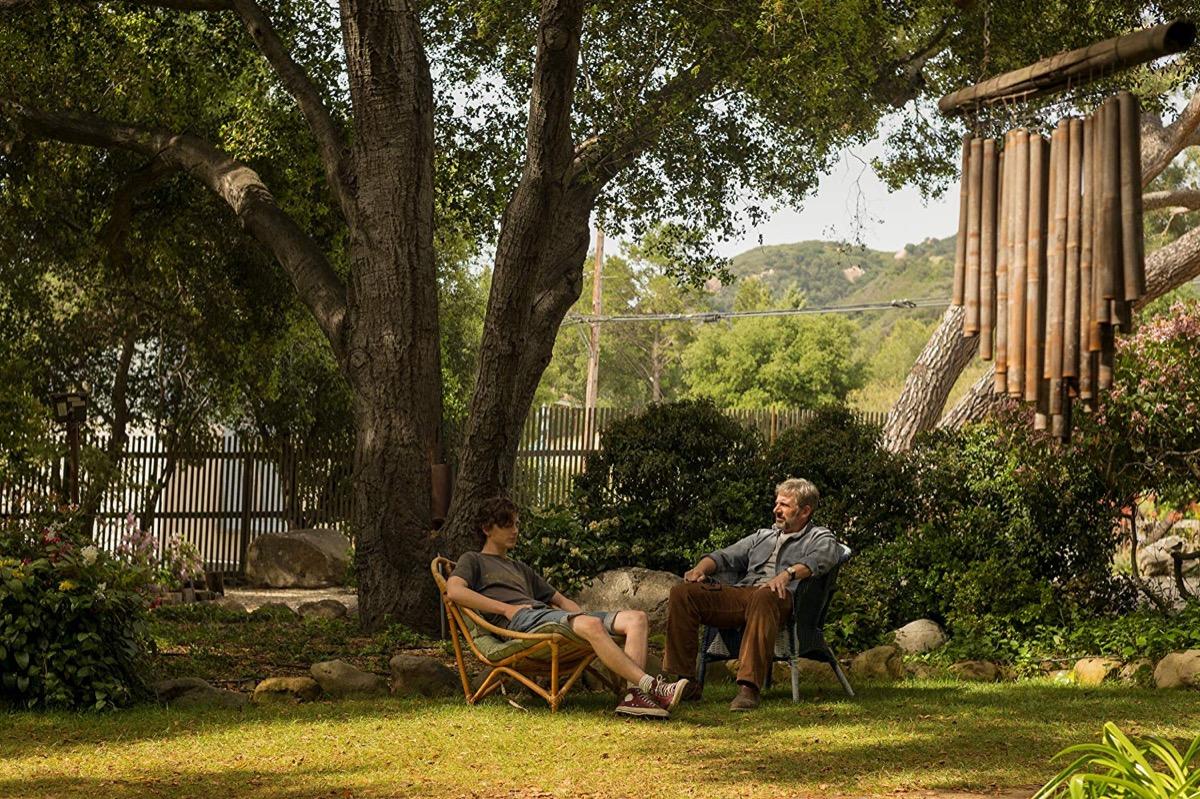 Steve Carell and Timothée Chalamet in Beautiful Boy (2018)