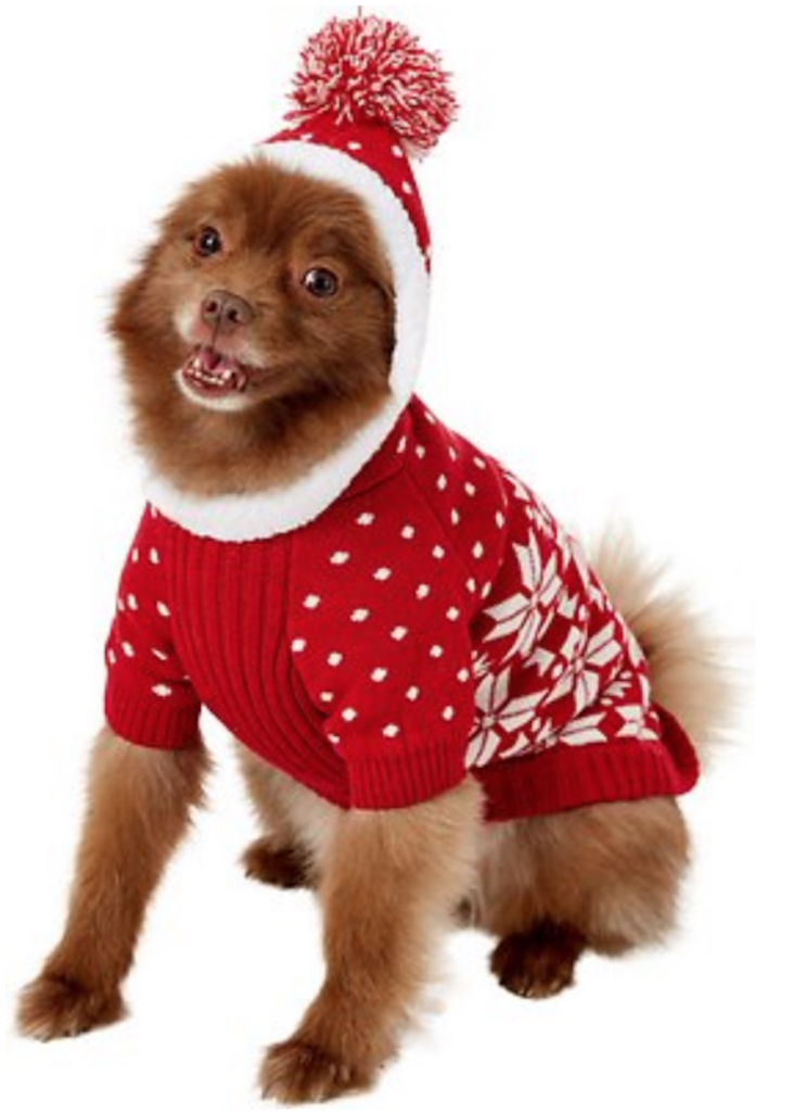 Blueberry Snowflake Dog Sweater adorable dog outfits
