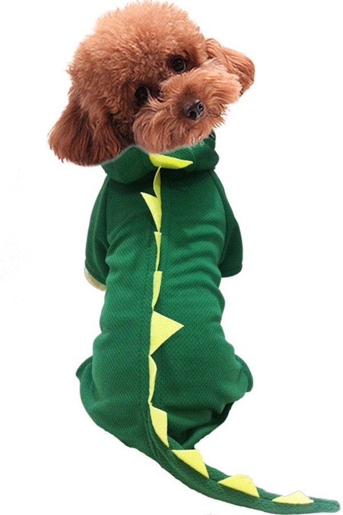 Dinosaur Onesie for Dog adorable dog outfits