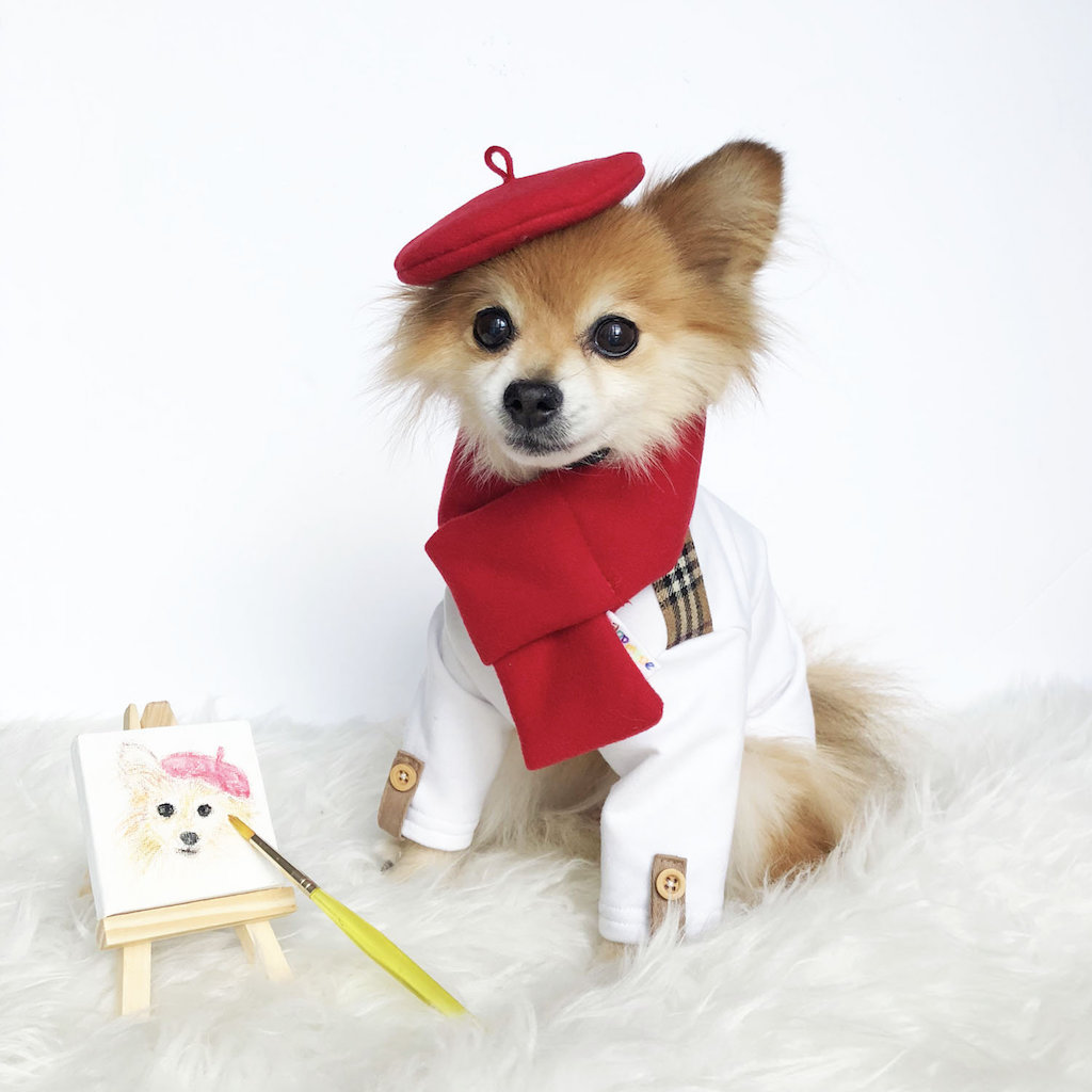 French Artist adorable dog outfits