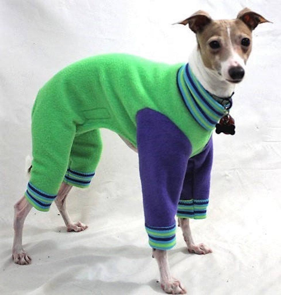 Green Apple Jams adorable dog outfits
