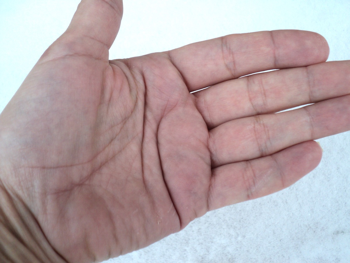 Inside of a hand palm markings