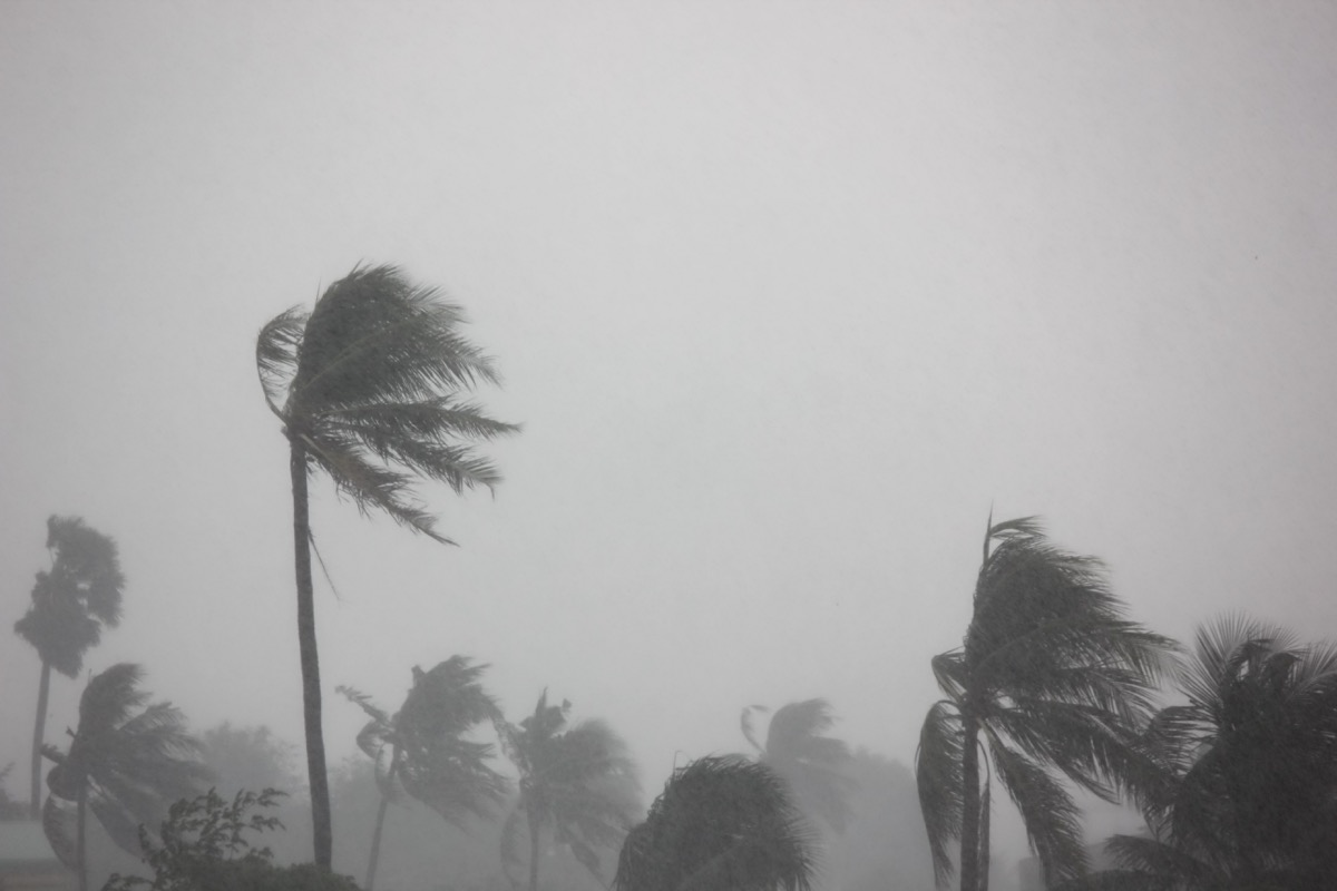 hurricane rain storm - hurricane facts