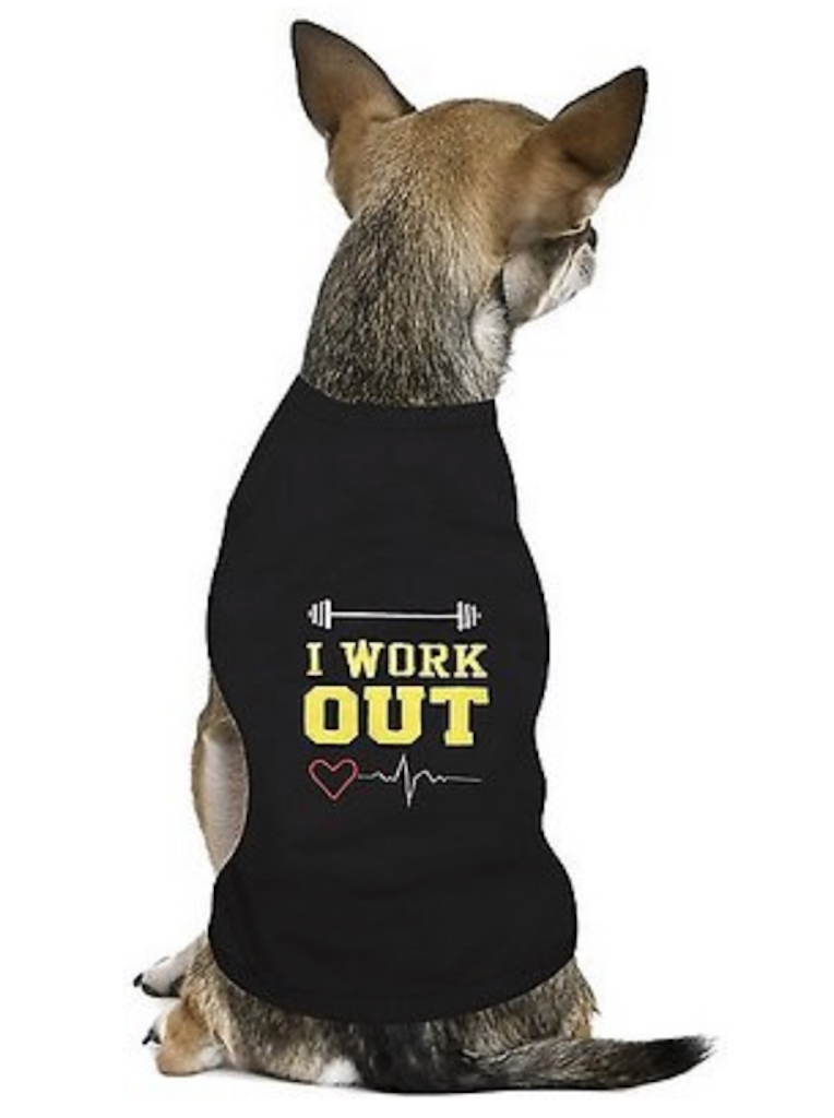 I Work Out Tee adorable dog outfits
