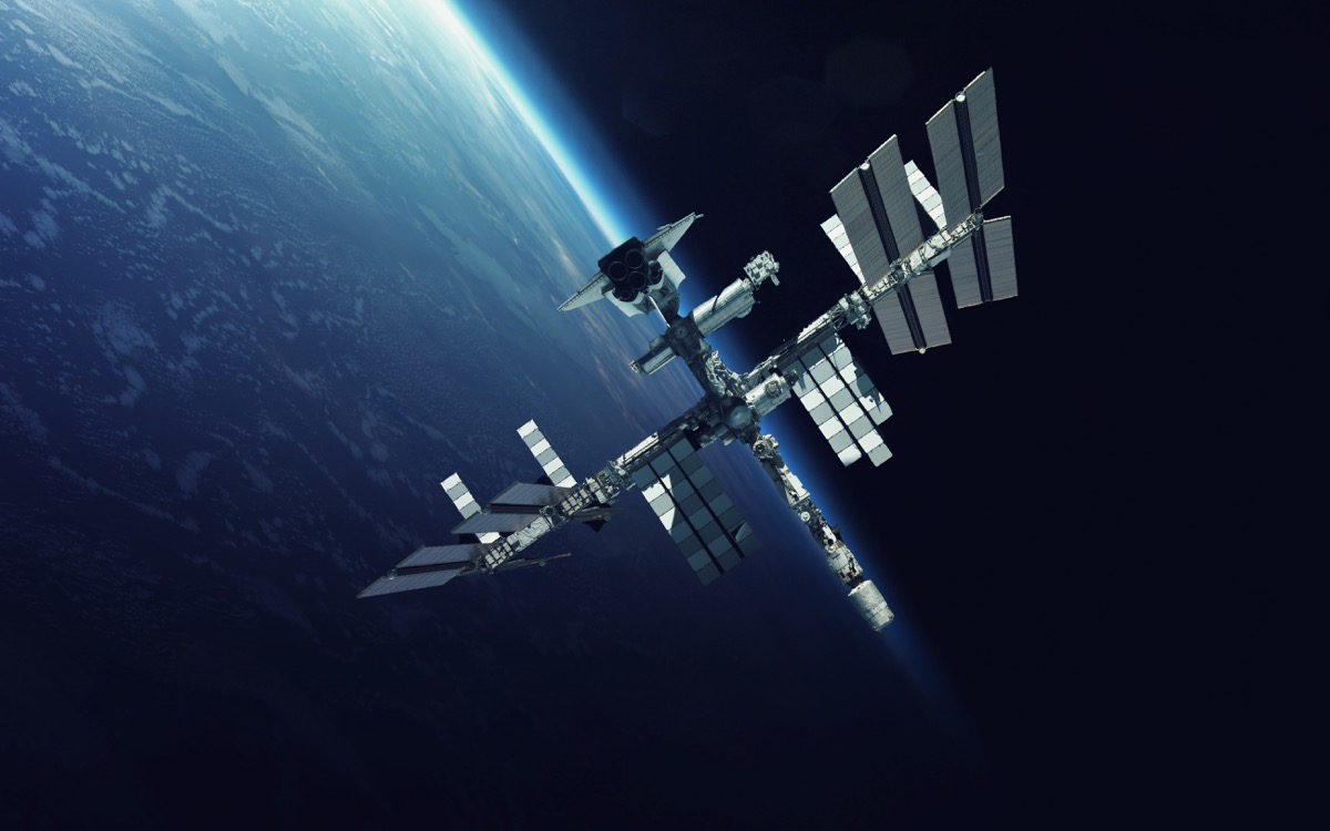 International Space Station {Spider Facts}