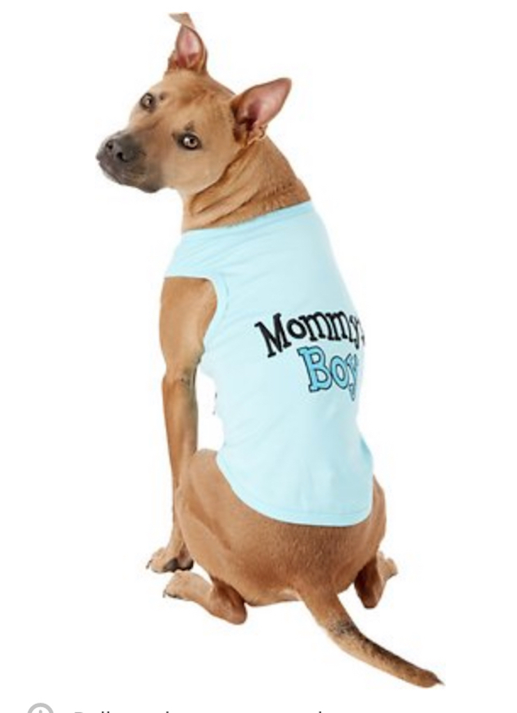 Mommy's Boy Tee adorable dog outfits