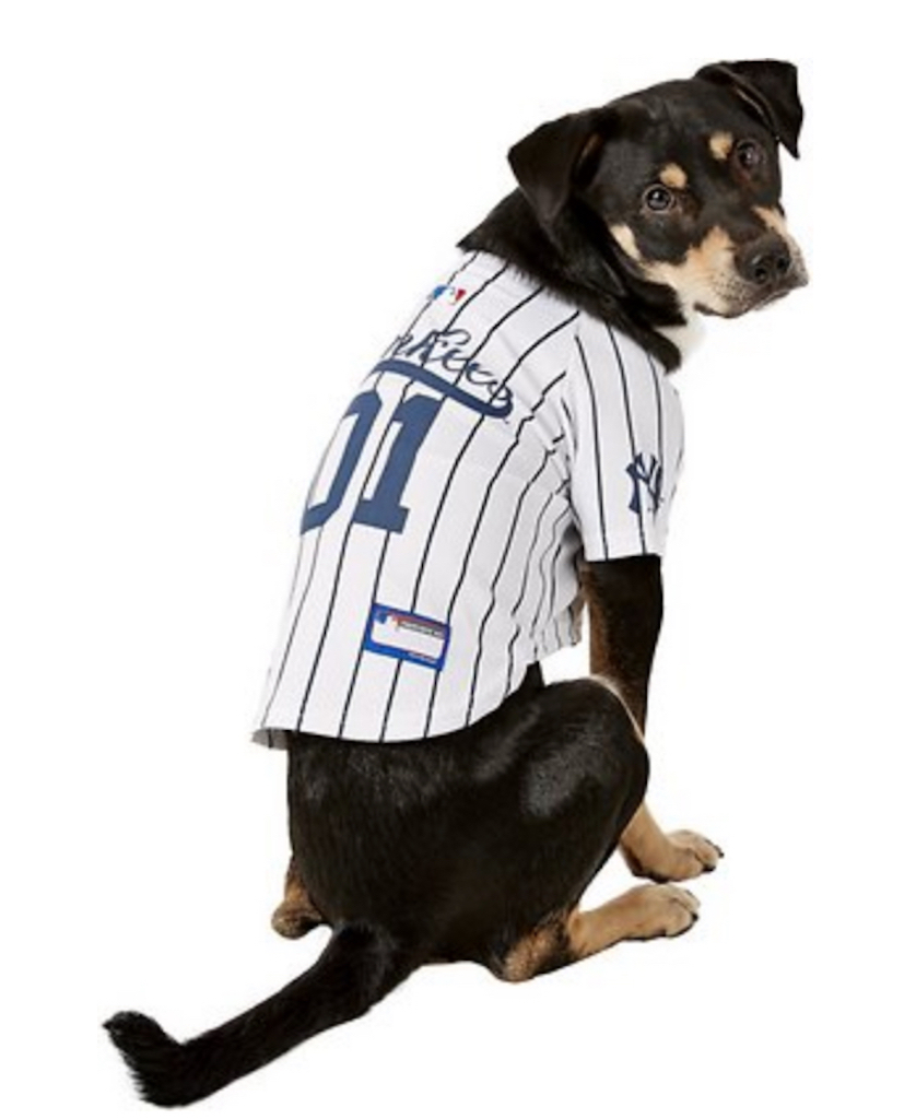 New York Yankees Dog Costume adorable dog outfits