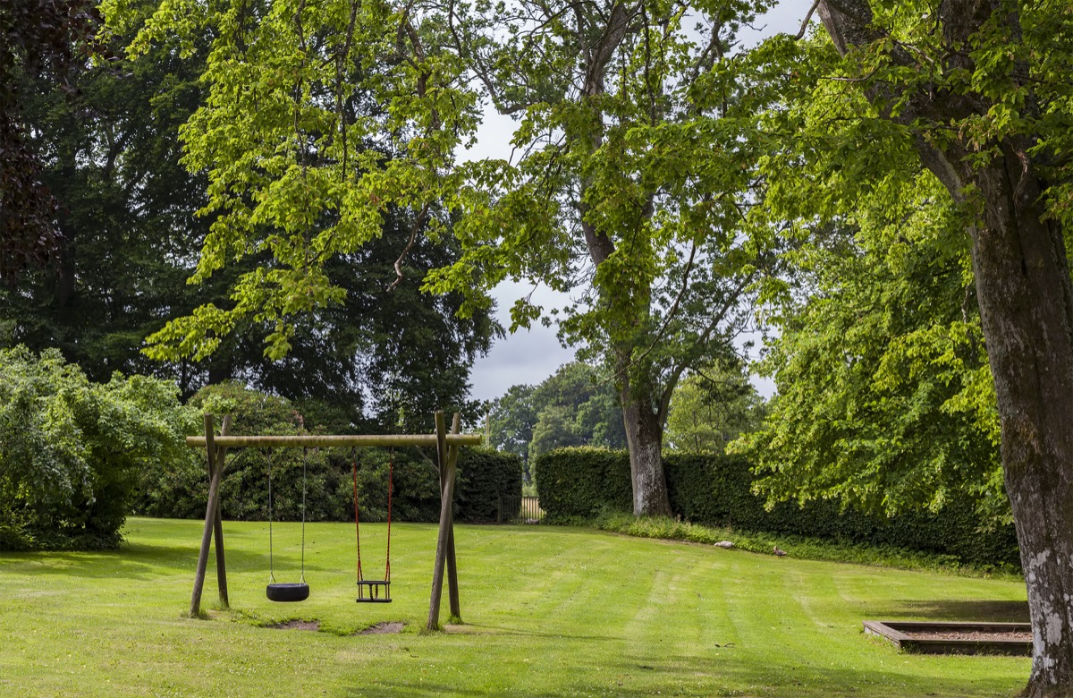 Yard with an Old Swing Set