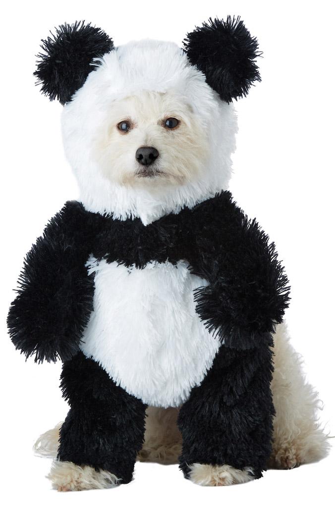 Panda Dog Costume adorable dog outfits