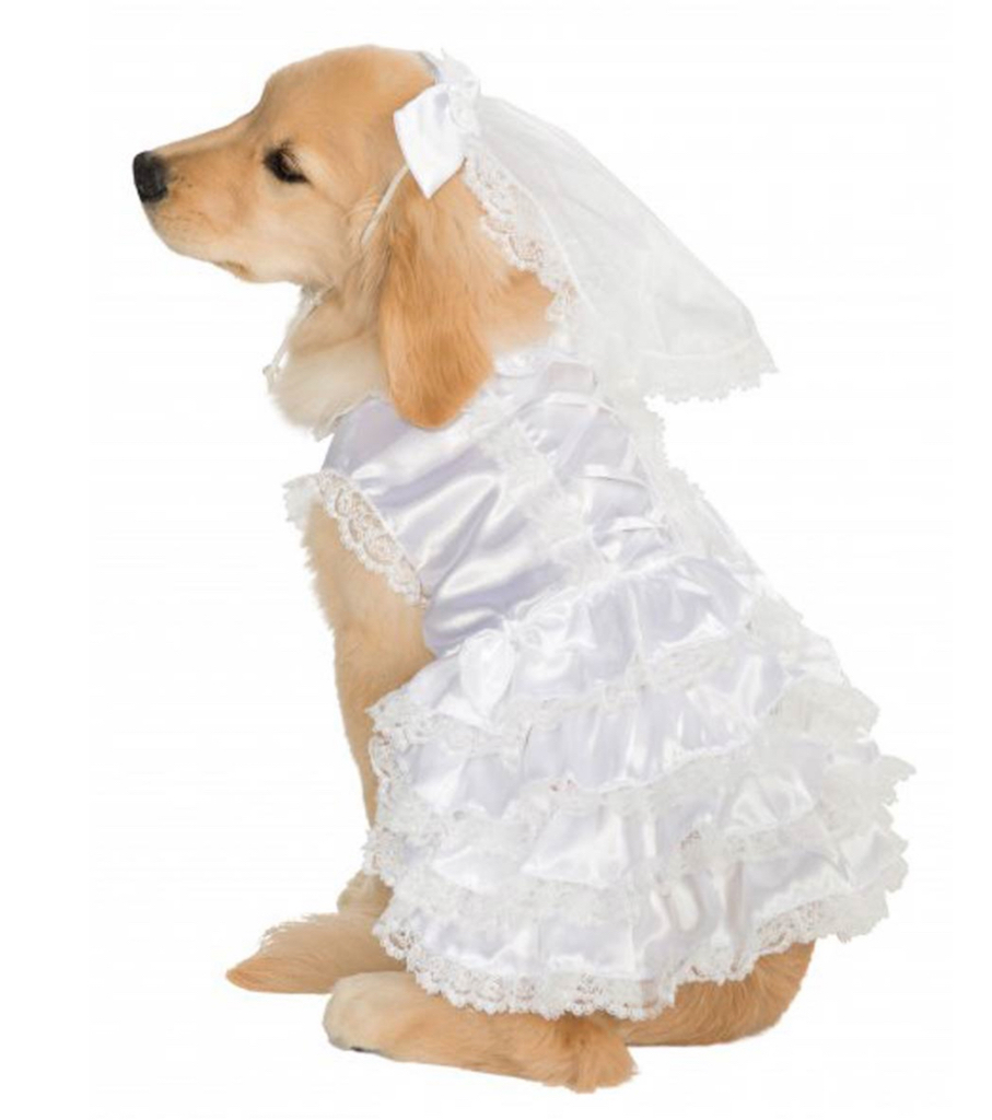 Rubie's Bride Dog Costume adorable dog outfits