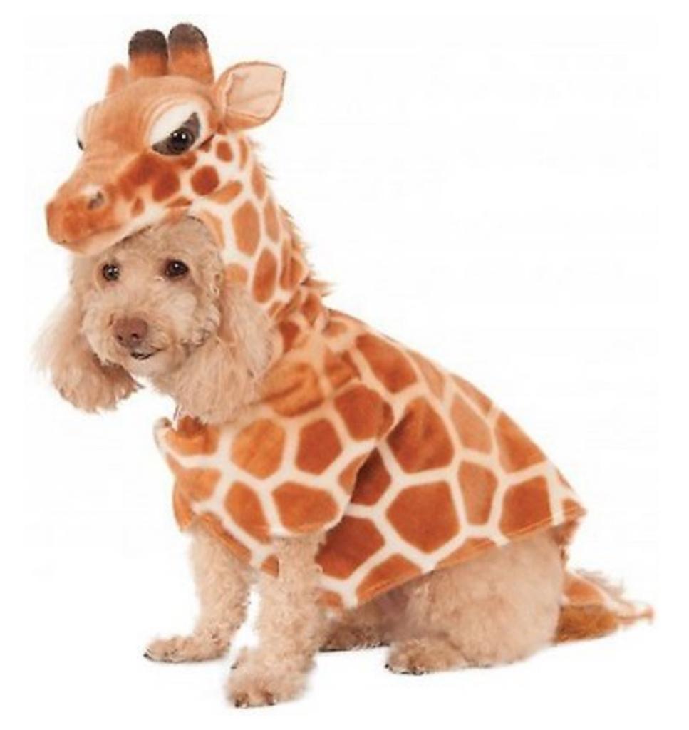 Rubie's Giraffe Dog Costume adorable dog outfits