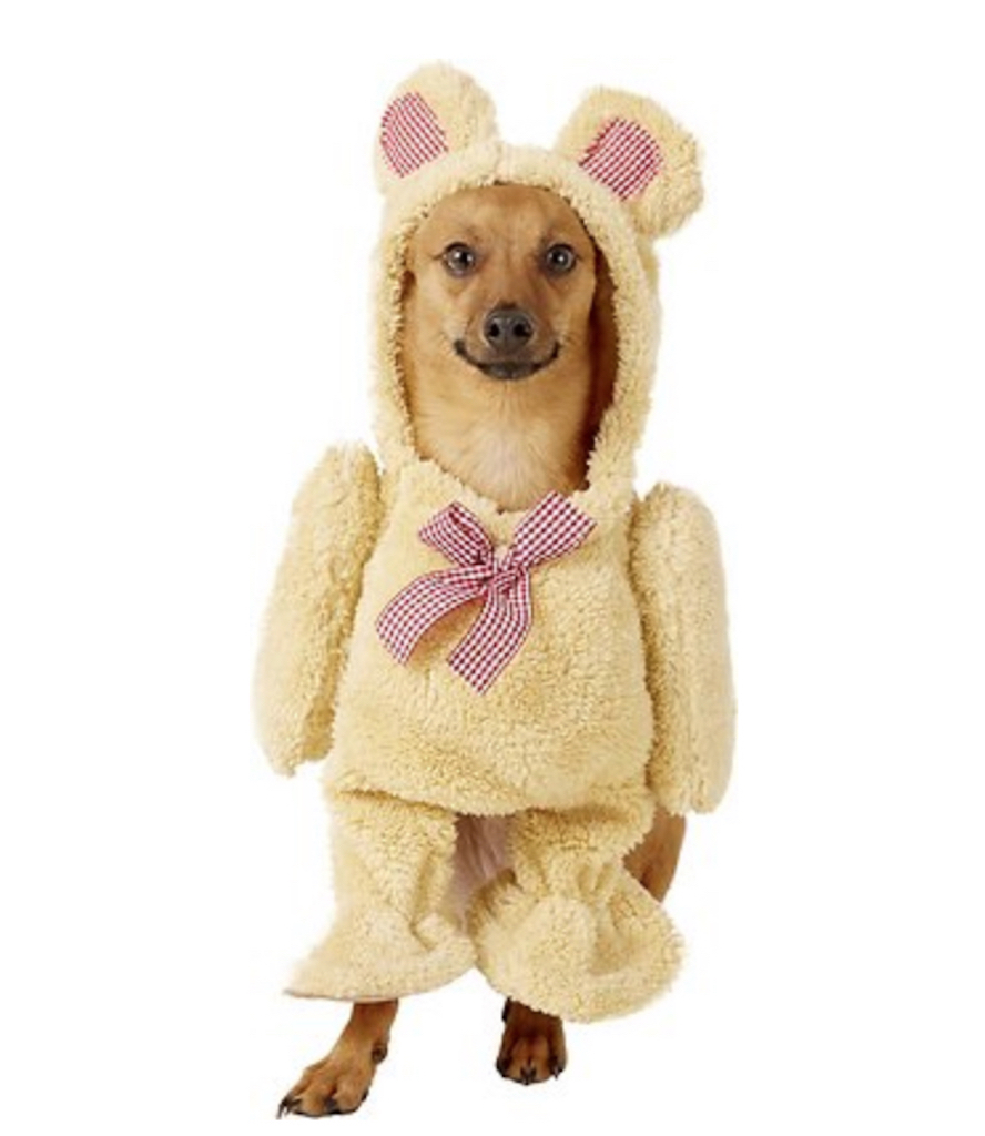 Rubie's Walking Teddy Bear Costume adorable dog outfits