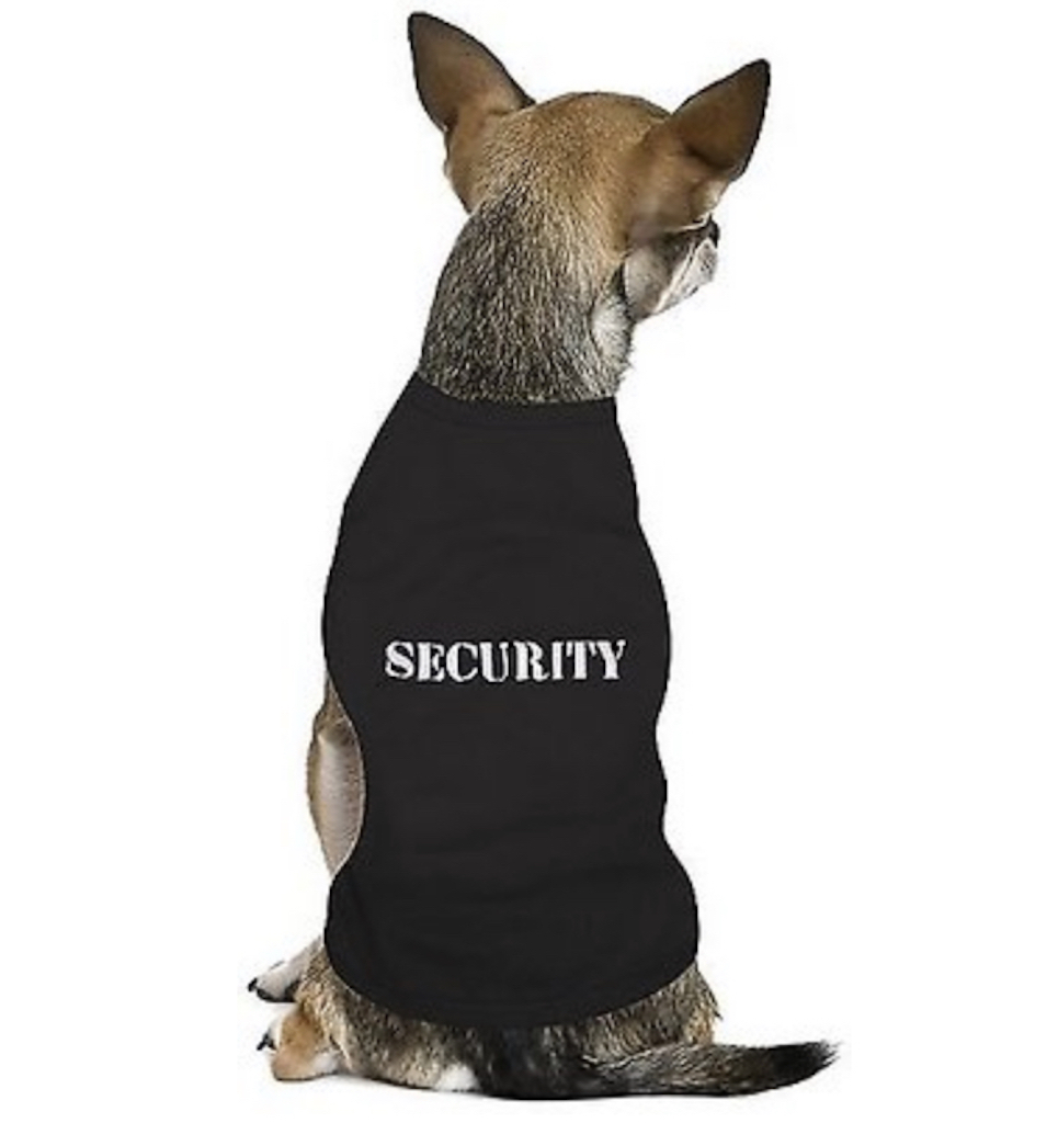 Security Dog Tee adorable dog outfits