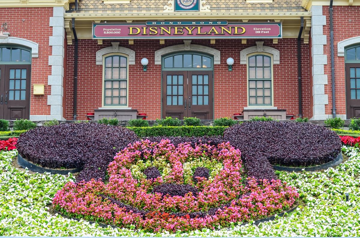 Disneyland Garden of Mickey Mouse's face in Hong Kong, Disney Facts