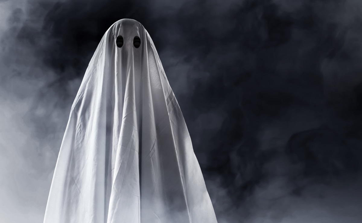 ghost in the mist - punny halloween costumes