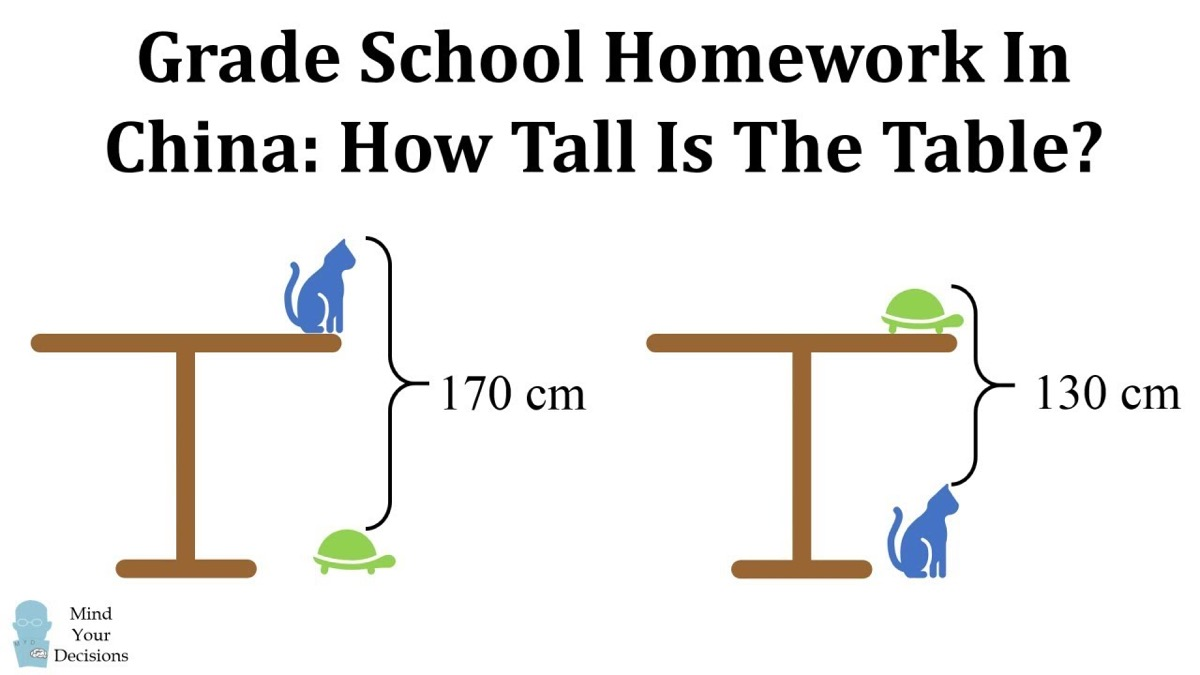 Table Cat Turtle Math Problem {Tricky Math Questions}