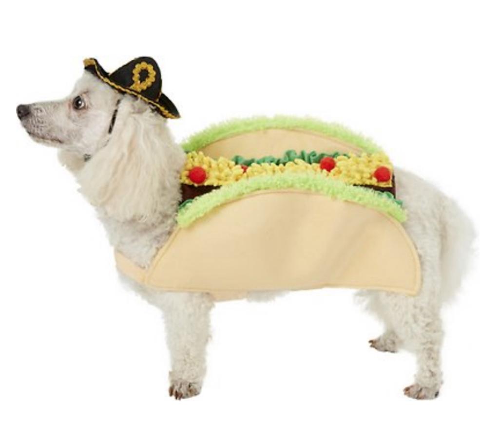 Taco Dog Costume adorable dog outfits
