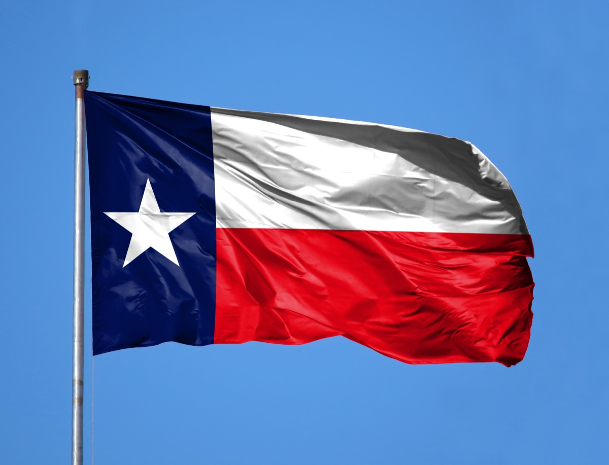 National flag State of Texas on a flagpole