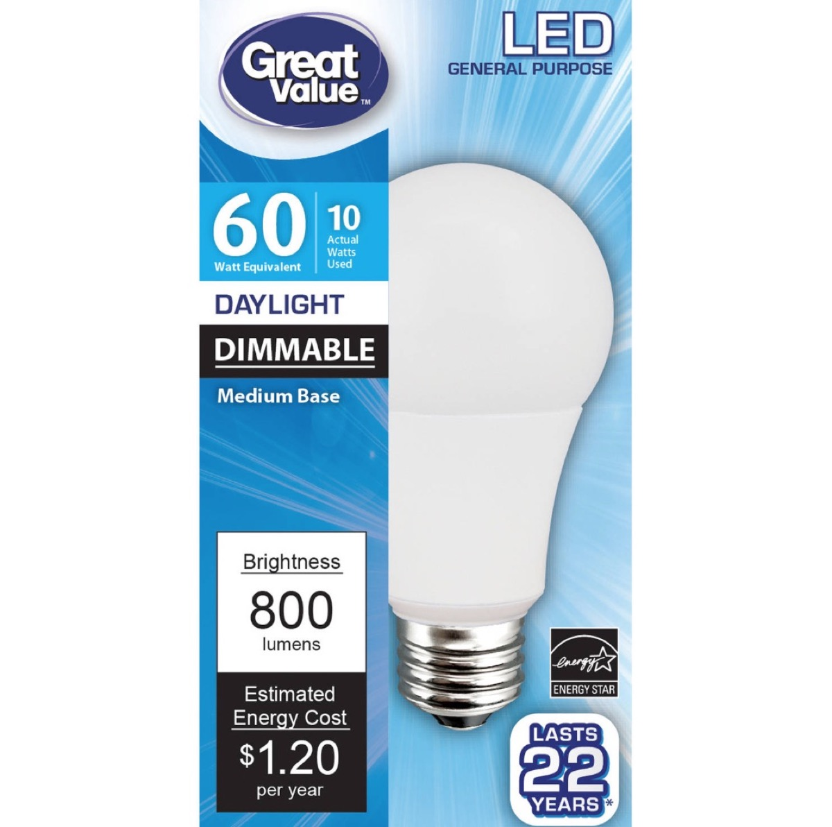 Walmart LED Light {Best Generic Products from Walmart}