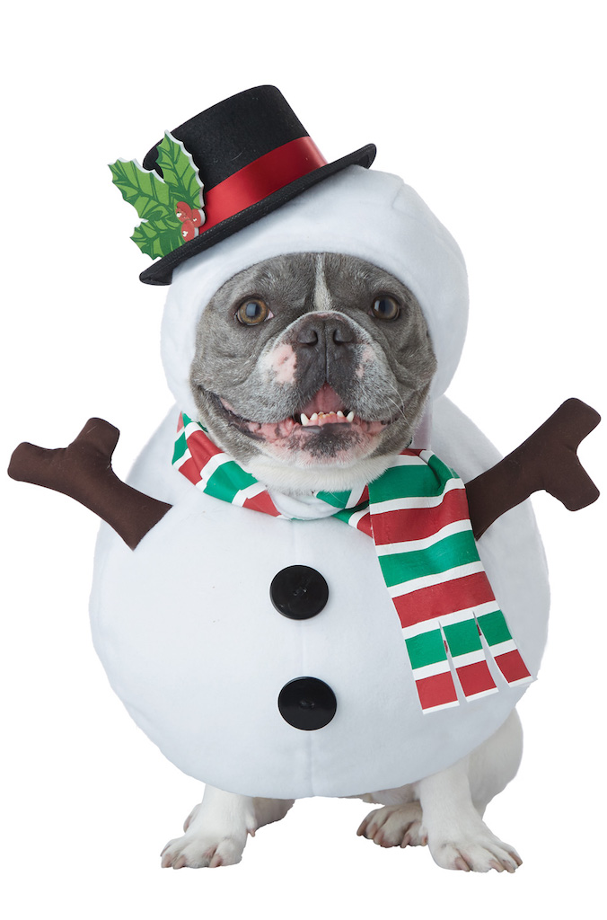 Winter Snowman Dog Costume adorable dog outfits