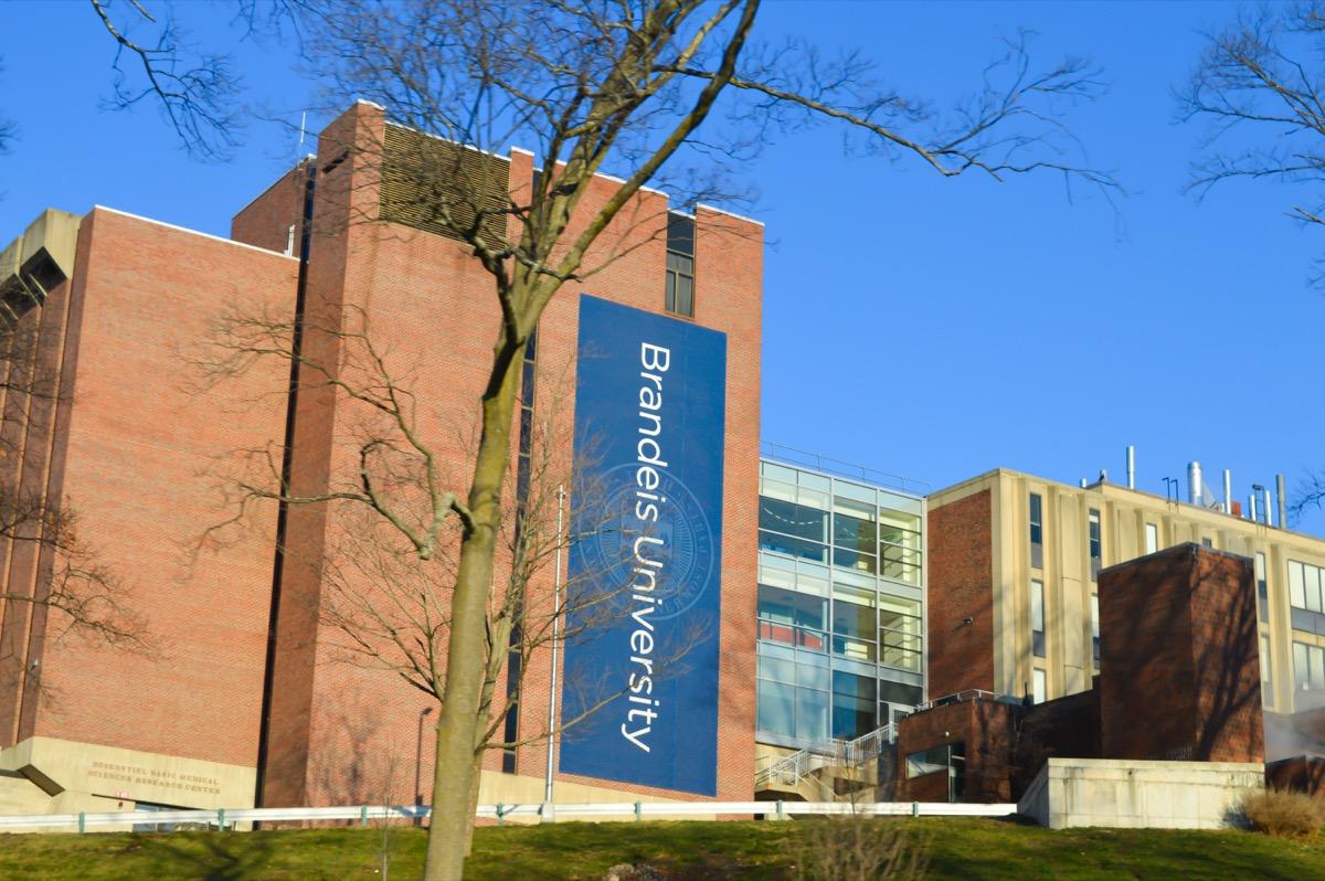 BOSTON, USA - DECEMBER 11: Brandeis University in Waltham, USA on December 11, 2016. - Image