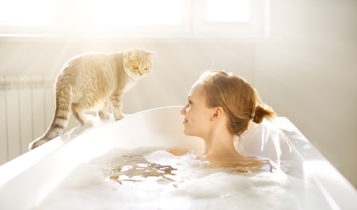 Cat by bathtub funny pet stories