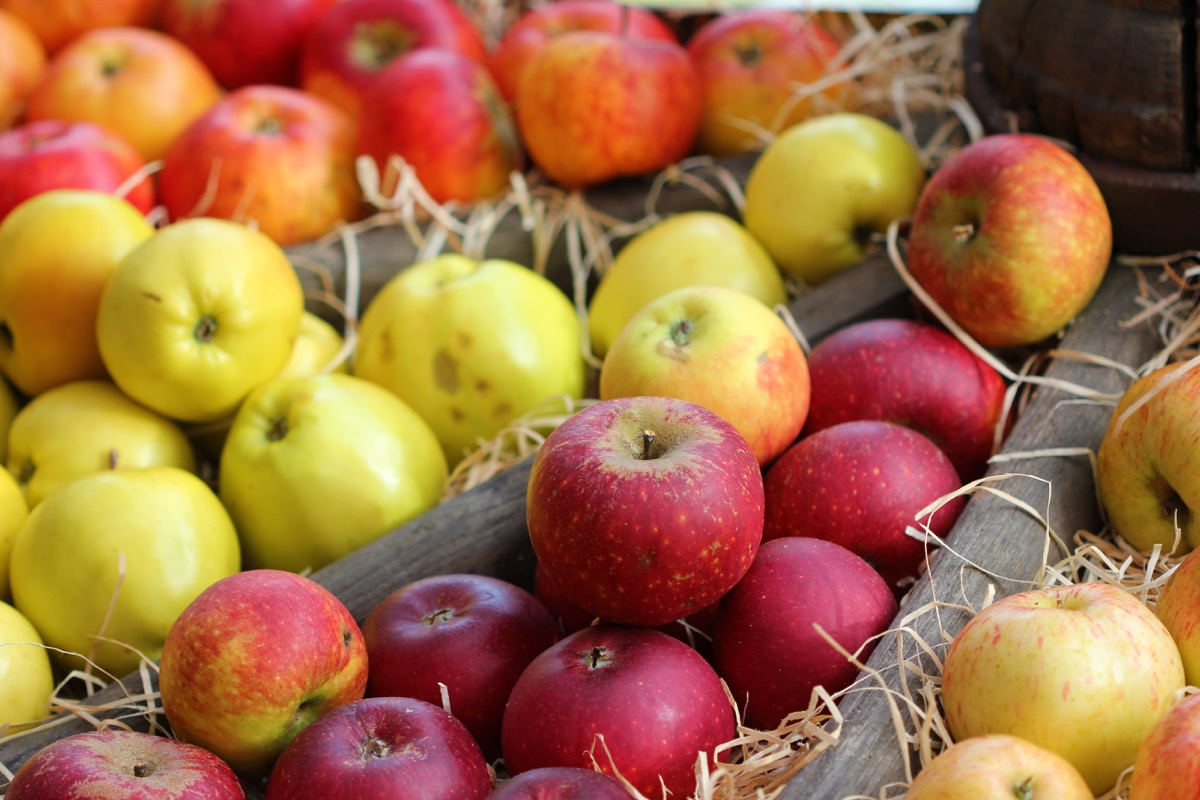 Different types of apples