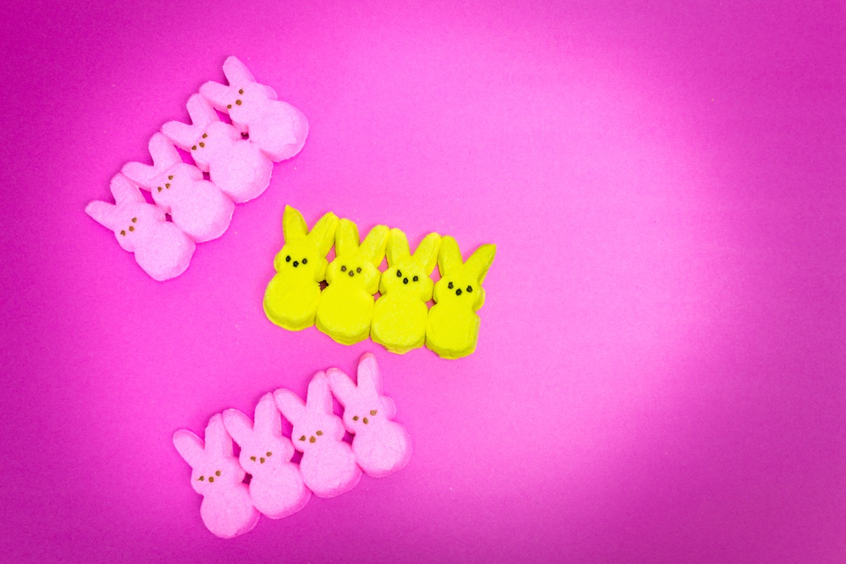 easter peeps candy in a row
