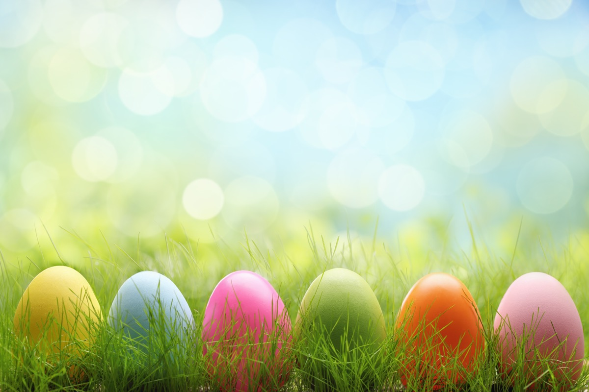 easter eggs standing in line in grass for easter egg rolling, best easter games