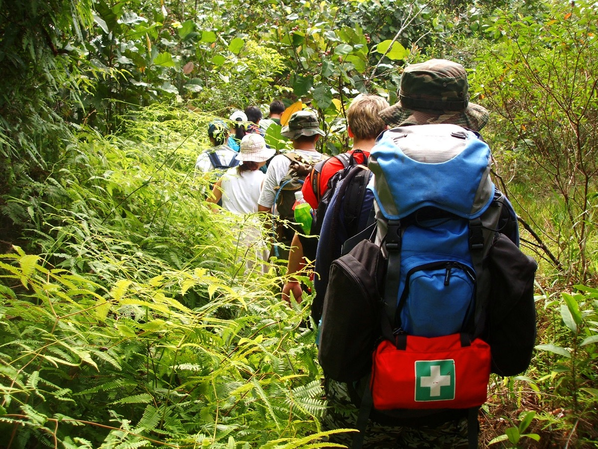 group trekking in the woods with first aid kits