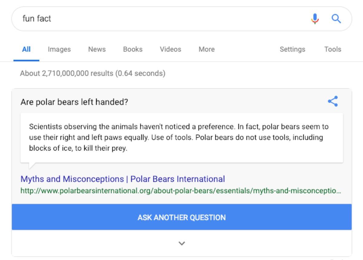 google fun fact search - google tricks