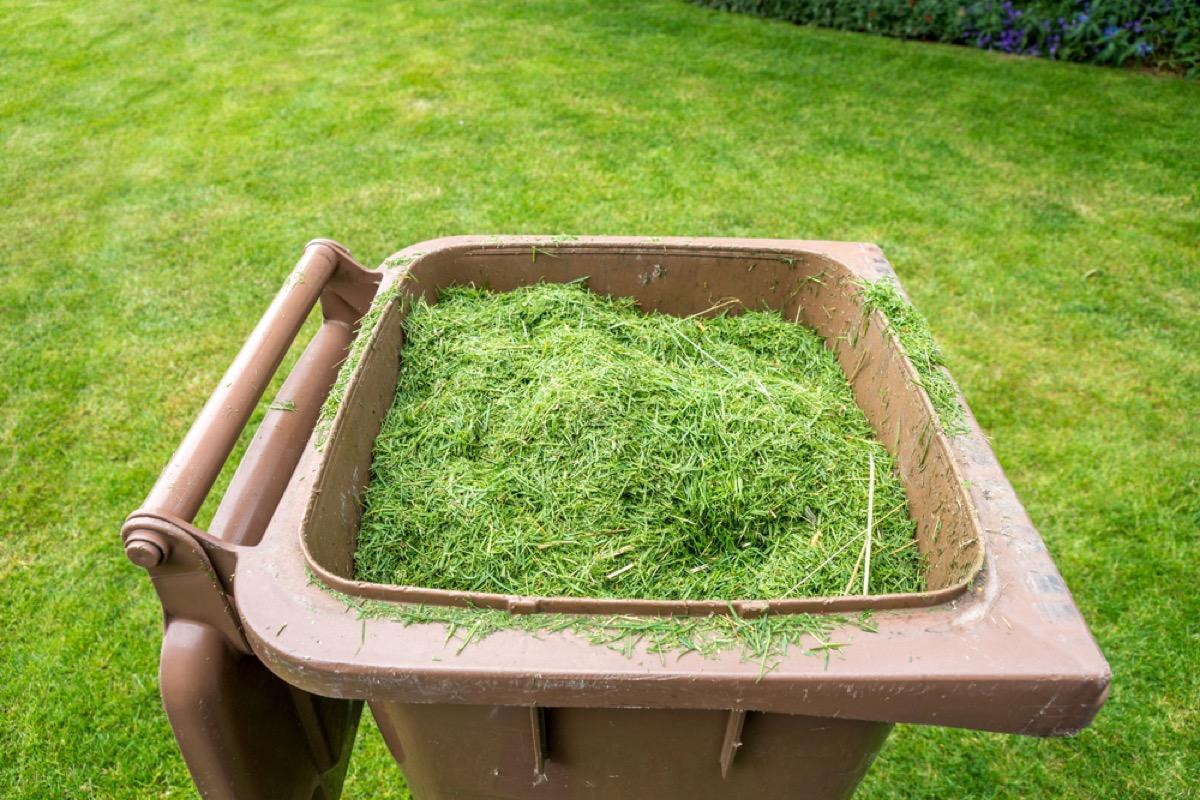 destroying your lawn