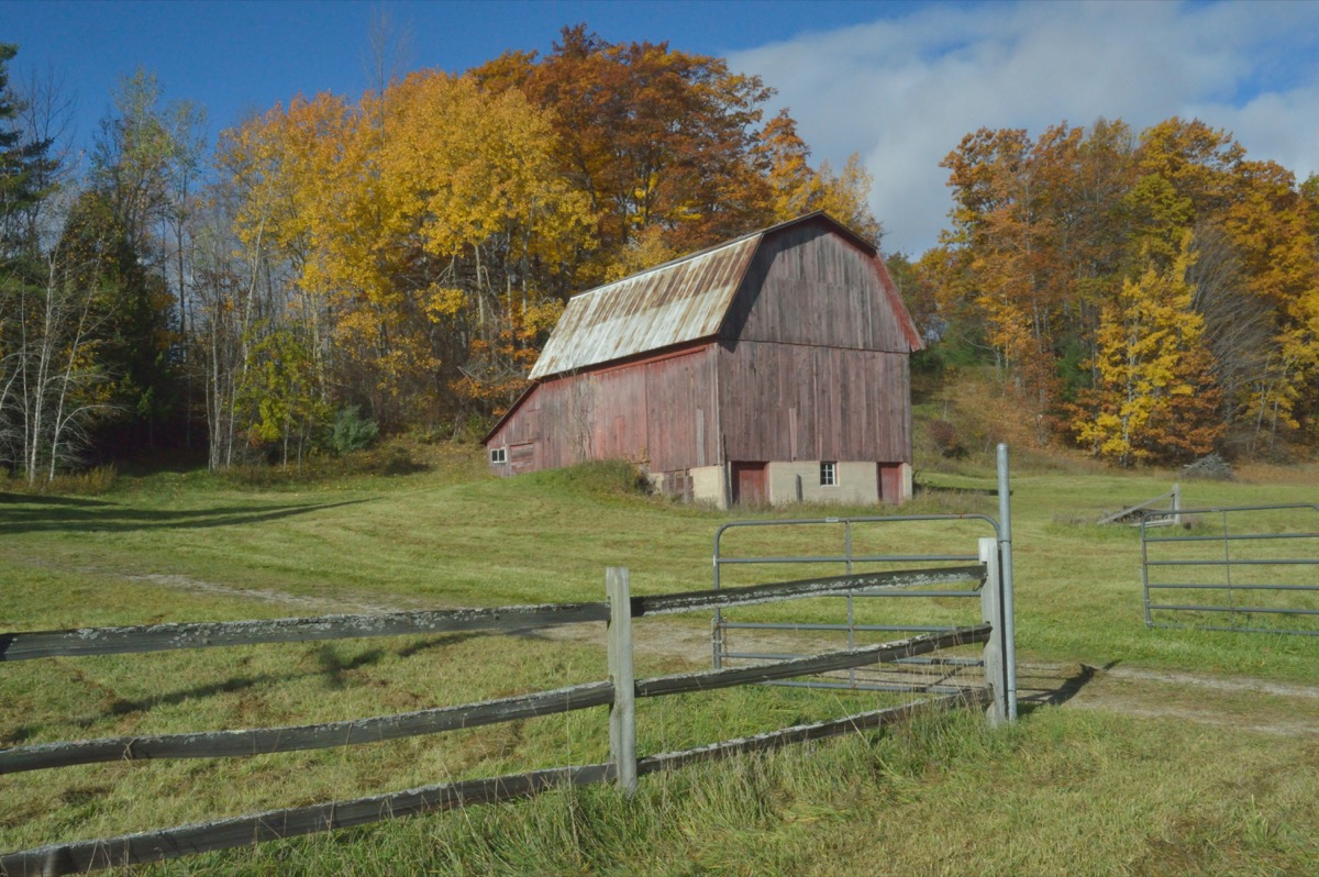 Old Barn, Harrisville Michigan - Image