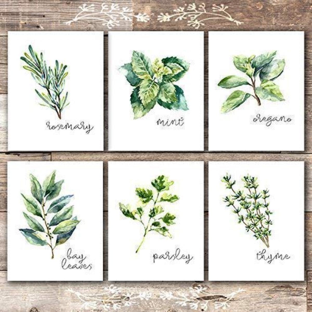 Herbal Art Prints {Handmade Items From Amazon}