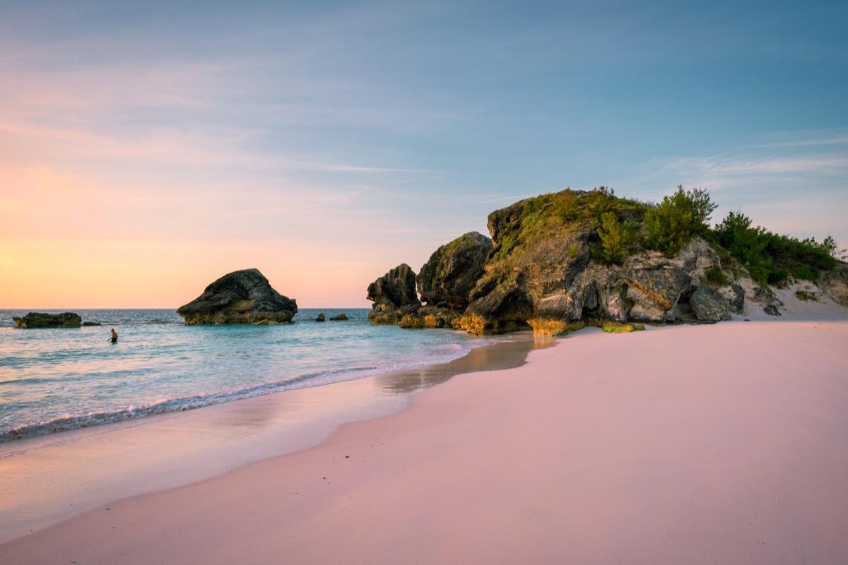 horse shoe bay pink sand beach in bermuda