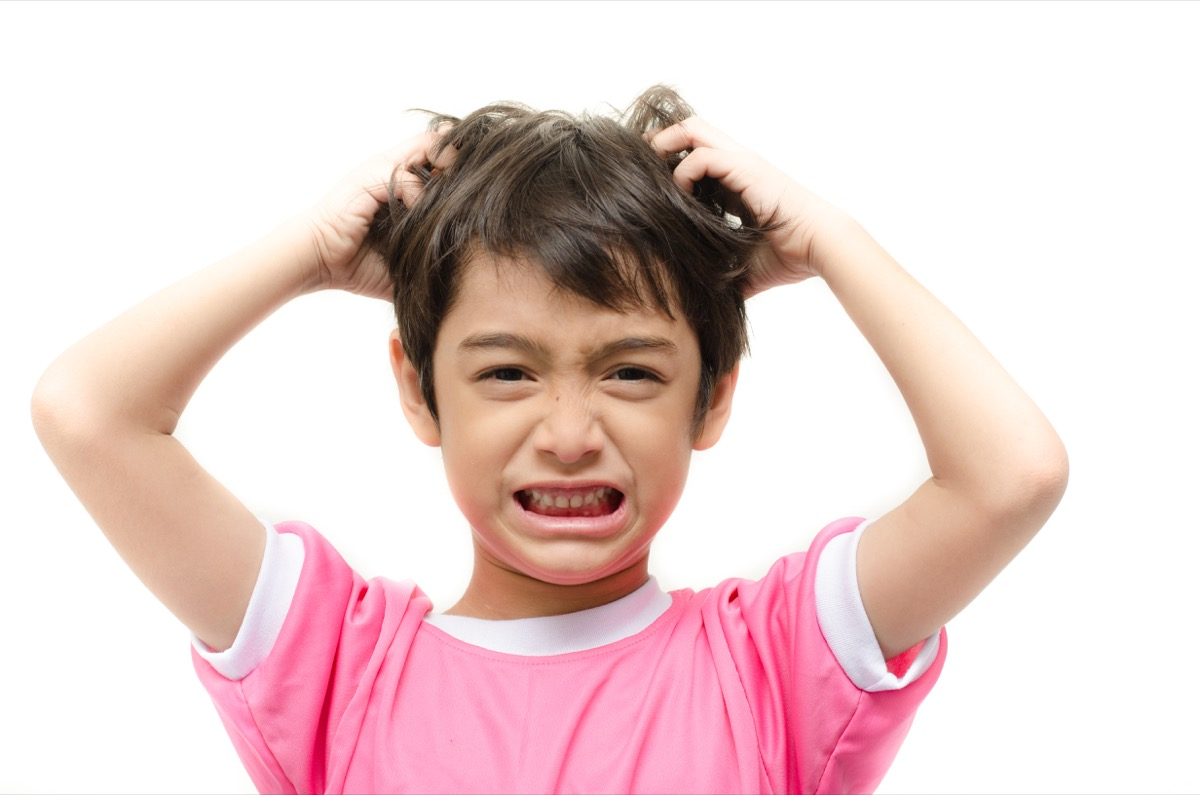 Little boy itchy his hair on white background, parenting is harder