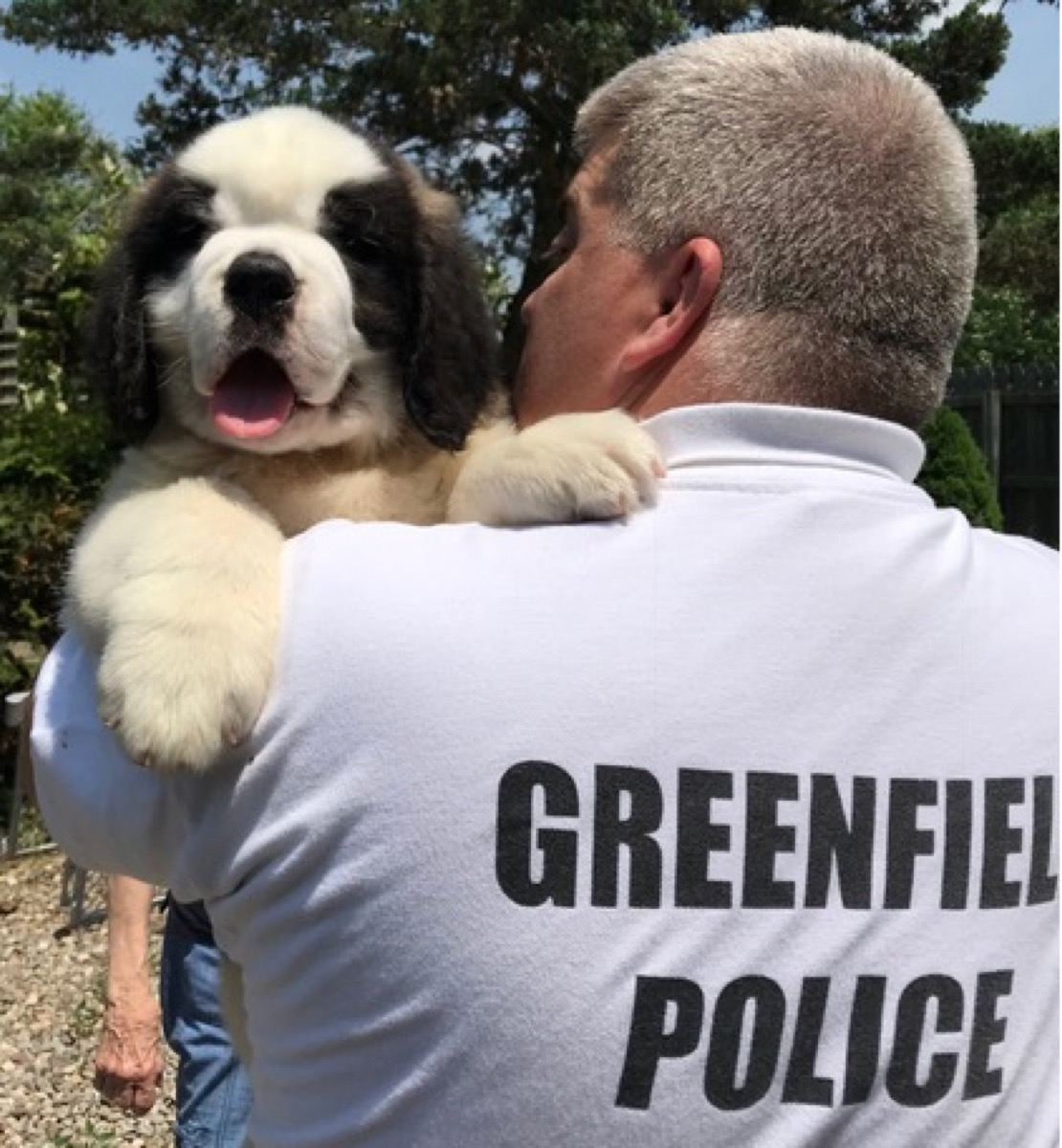 Officer Donut Connecticut adorable police animals