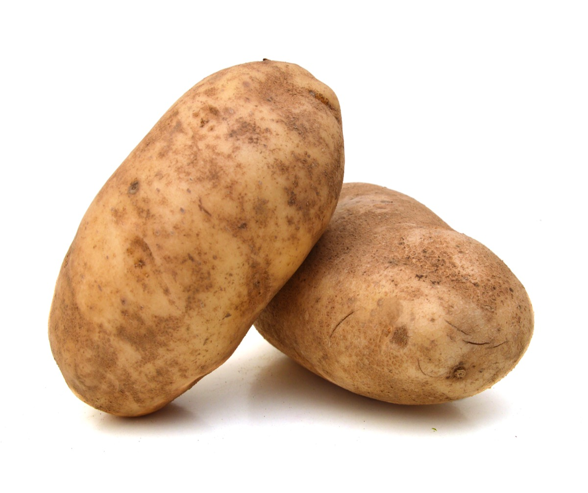 two potatoes on a white background, crazy facts