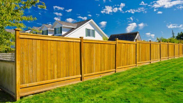 privacy fencing, backyard dangers