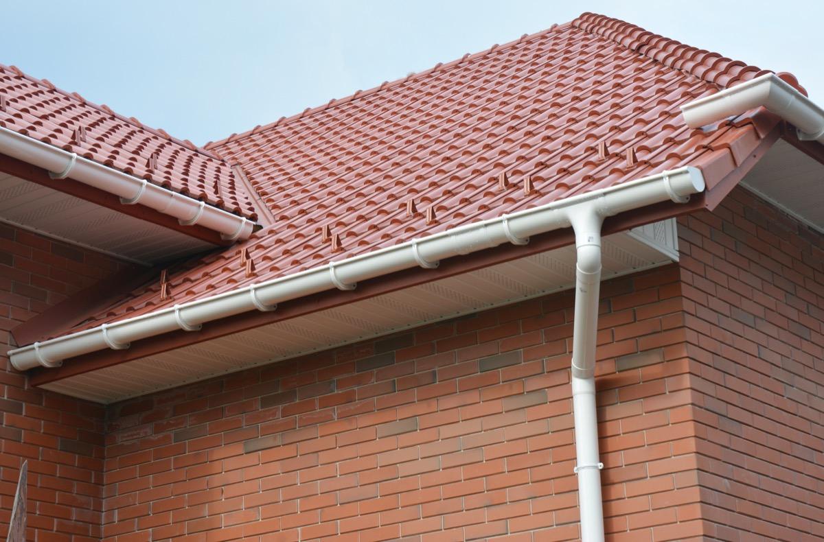 roof with bird box corner