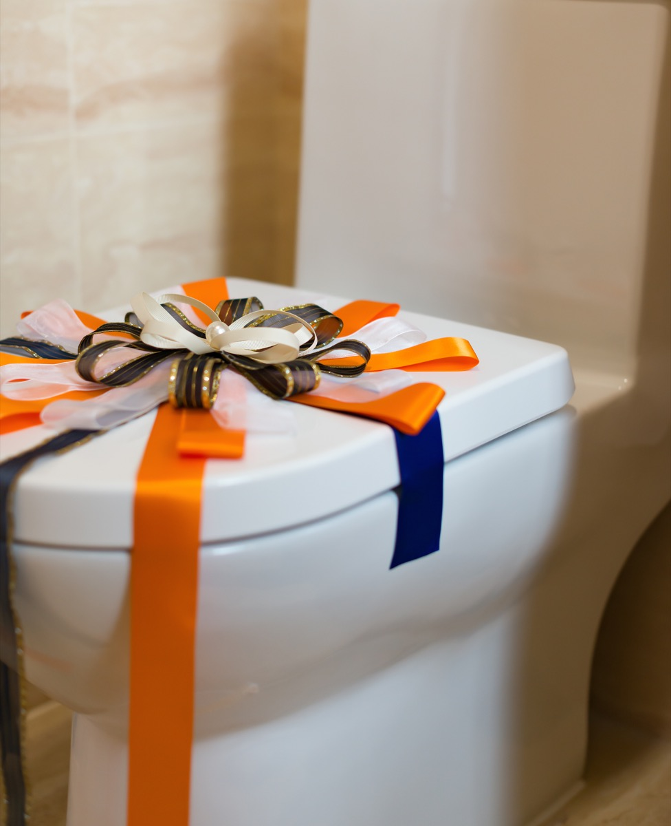 Toilet seat with a bow on it