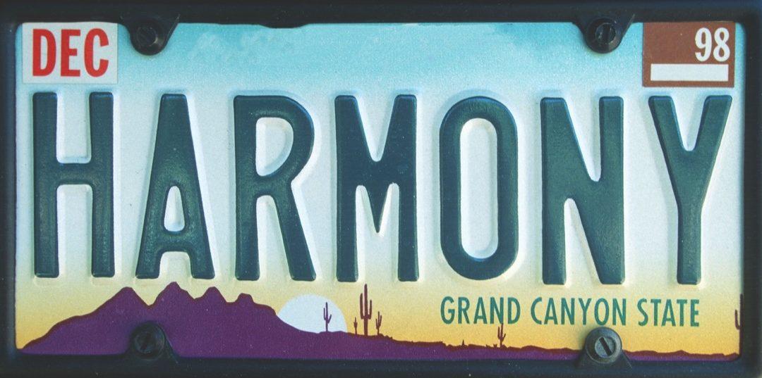 arizona license plate photoshopped