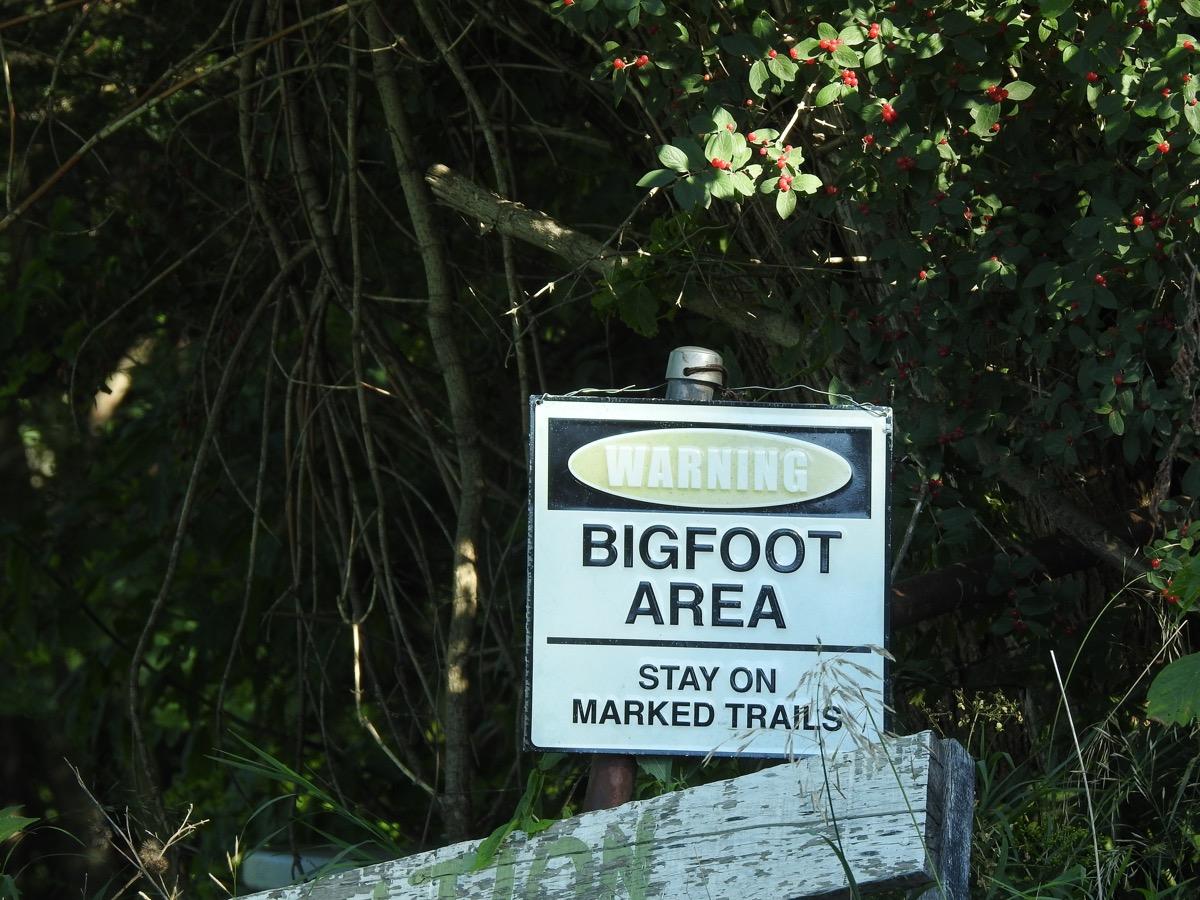 Bigfoot Warning Sign - Bigfoot Festival