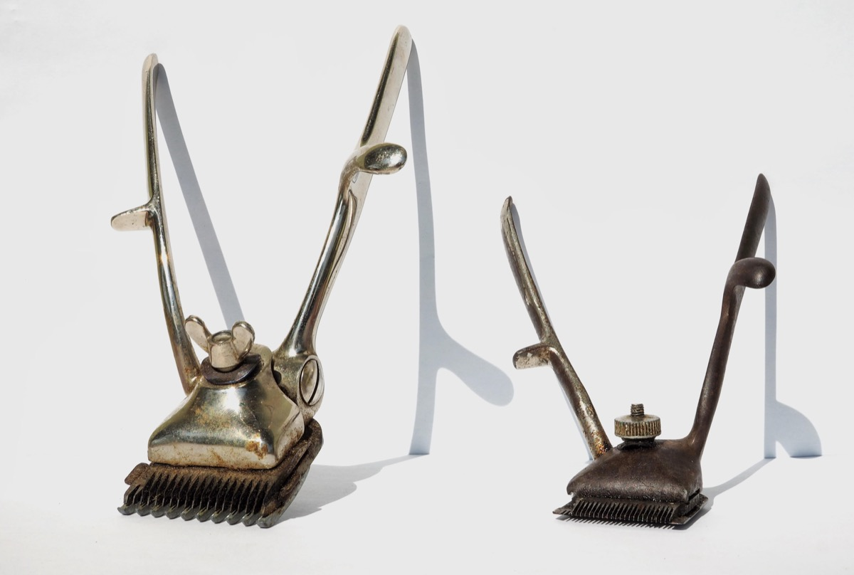 antique hair clippers weird old household items