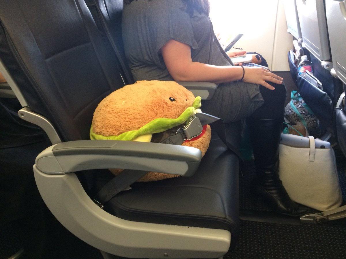david farrier tweet photos of terrible airplane passengers